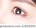 瞳孔 22892695