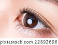ม่านตา,ตา,เสริมสวย 22892696