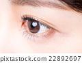 小學生 瞳孔 眼睛 22892697