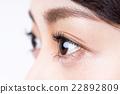 小學生 瞳孔 眼睛 22892809