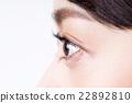 瞳孔 22892810