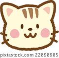 毛孩 貓 貓咪 22898985