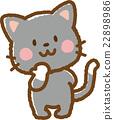 貓 貓咪 小貓 22898986