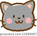 貓 貓咪 小貓 22898987