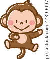 monkey, monkeys, animal 22899097