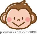 一隻猴子 22899098