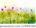 Abstract watercolor painting purple cosmos flowers 22899280
