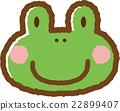 青蛙 杯子 動物 22899407