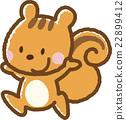 松鼠 矢量 动物 22899412