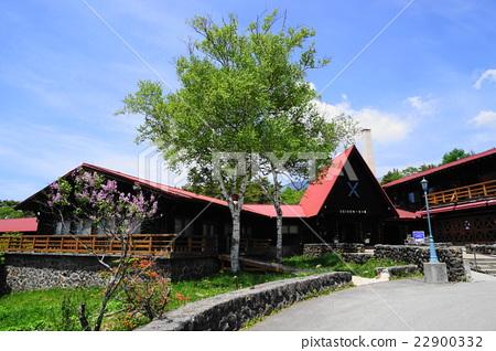 May Kiyosato Takahara 04 Shimizu dormitory of the fresh green 22900332