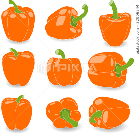 Pepper, set of orange peppers, vector illustration 22906544