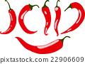 Red chili pepper, vector illustration, isolated 22906609