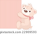 Teddy Bear Holds Sign 22909593
