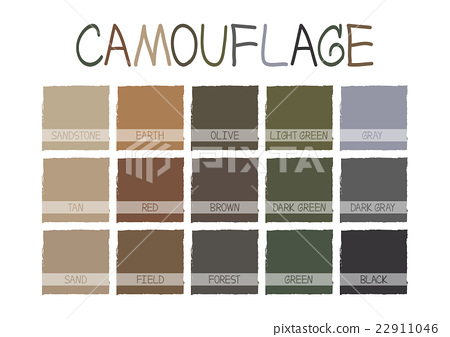 Camouflage Color Tone 22911046