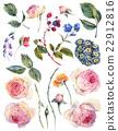 잎, 장미, 꽃 22912816