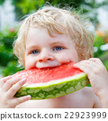 little toddler boy  eating healthy watermelon in 22923999