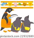 Adelie penguin nursery school 22932680