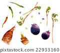 京都蔬菜 手繪 illustration 22933160