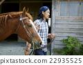 肖像 馬兒 馬 22935525