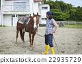 肖像 馬兒 馬 22935729