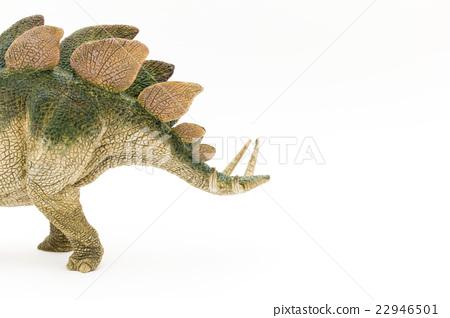 Stegosaurus: Stegosaurus 22946501