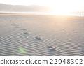 沙灘 海灘 海岸 22948302