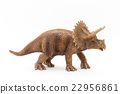Triceratops: Triceratops 22956861