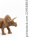 Triceratops: Triceratops 22956863