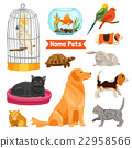 Home Pets Set 22958566