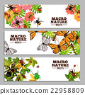 Insects Horizontal Banners 22958809