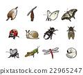 蟲子 漏洞 昆蟲 22965247