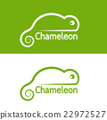 Vector image of chameleon design 22972527