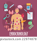 Endocrinology and endocrine system flat icon 22974878