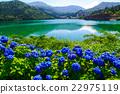 원앙새의 연못과 수국 22975119