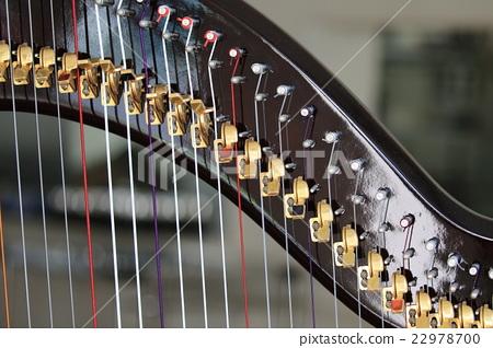 harp 22978700
