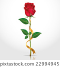 Beauty red rose with ribbons. 22994945