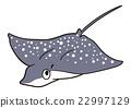 물고기의 일러스트마다 라트 비 에이 22997129