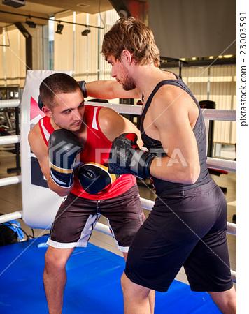 Two men boxer boxing . 23003591