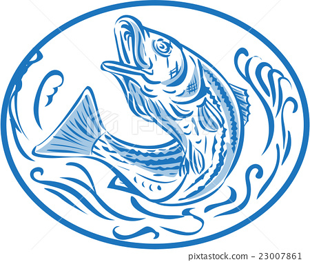 Rockfish Jumping Up Oval Drawing 23007861