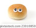 eyeball, eyes, eye 23010850