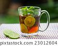Herbal Tea 23012604