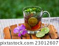 Herbal Tea 23012607