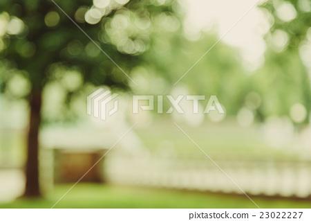 Garden alley bokeh background, lens blur 23022227