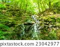 森林 樹林 綠色 23042977