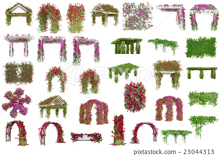 Set pergolas with plants, flowers 23044313