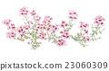 ดอกไม้,ไม้,โรงงาน 23060309