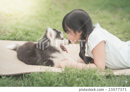 Stock Photo: Asian girl playing with siberian husky puppy
