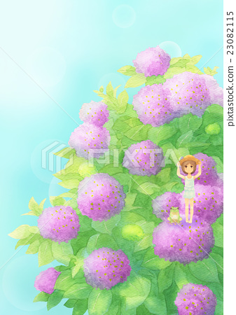 Hydrangea and guest vertical (sunny pink) 23082115