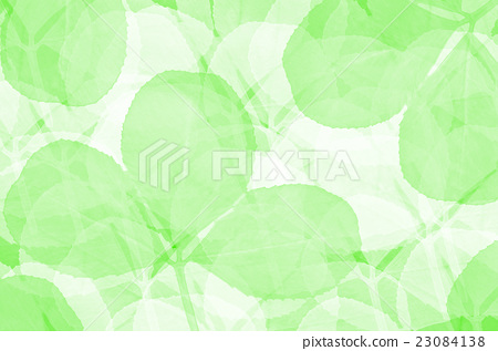 clover leaves background 23084138