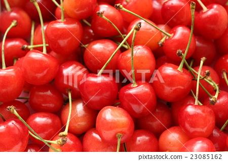 Cherry 23085162